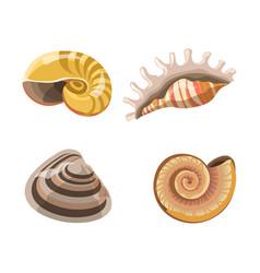 Shells or seashells isolated icons vector