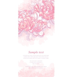 Romantic background with pink chrysanthemum vector