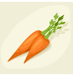 Stylized of fresh ripe carrots vector