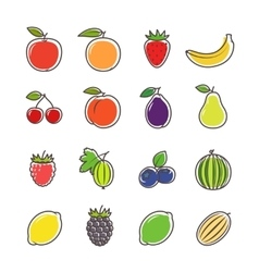 Fruit and berries line icons vector