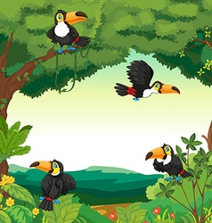 Scene with many toucans flying in forest vector