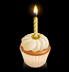 Fairy cake cupcake with birthday candle vector