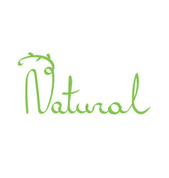 Hand drawn lettering word natural vector