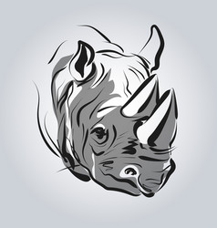 Head of a rhinoceros vector
