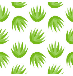 aloe vera plant seamless pattern vector image