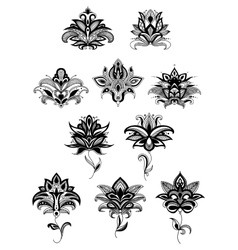 Persian ornamental paisley flowers and blossoms vector