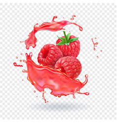 raspberry juice fresh fruit splash vector image