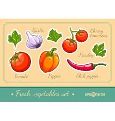 Set of fresh vegetables vector image