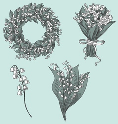 Set of lily of the valley drawings vector