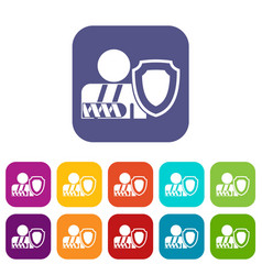 Oken arm and safety shield icons set vector