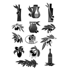 Olives olive oil bottles and pitchers vector