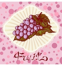 Bunch of grapes color drawing card vector