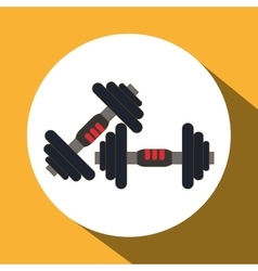 Gym and weights icon design vector