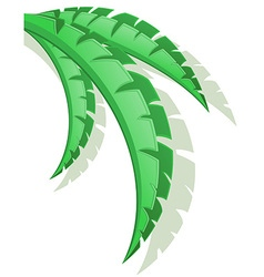 Palm branch 03 vector