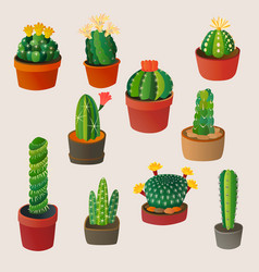 Cute cartoon cactus home plant nature vector