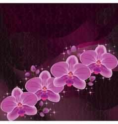 Invitation or greeting card dark red with orchid vector image vector image