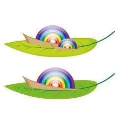 Snail Rainbow vector image