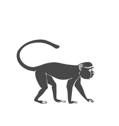 Monkey sitting on a branch vector