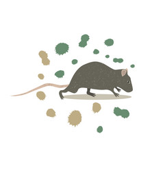 animal rat clip art vector image