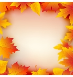 Autumn leaves plant frame Mapple leaf frame vector image