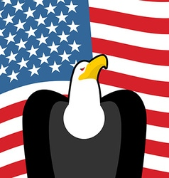 Bald Eagle USA national symbols Large birds of vector image vector image