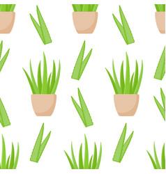 Aloe vera plant seamless pattern vector