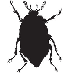 chafer vector image