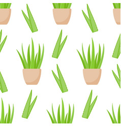 aloe vera plant seamless pattern vector image vector image
