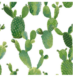 Cactus tropical summer botanical background vector
