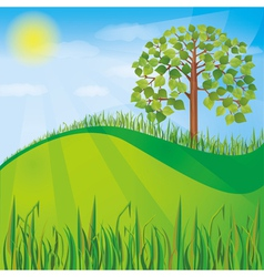 Summer or spring nature background with green tree vector image