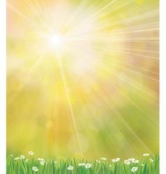 Sun grass background vector
