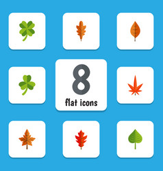 flat icon maple set of leaf linden aspen and vector image