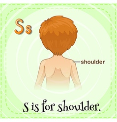 Shoulder vector