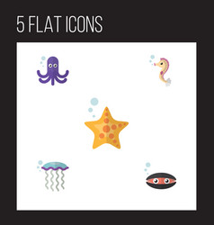 Flat icon nature set of scallop tentacle medusa vector
