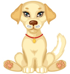 pale puppy vector image