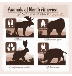 North america animals and animal tracks vector
