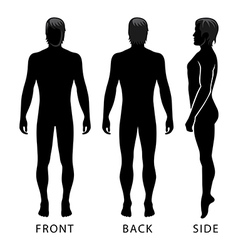 Fashion man full length template figure vector image vector image