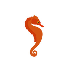 isolated seahorse icon vector image