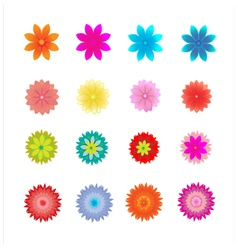 Set of flower vector image vector image