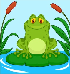 Cute green frog cartoon on a lily pad vector image