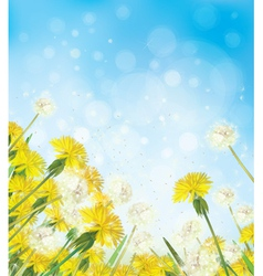 Flowers sky background vector