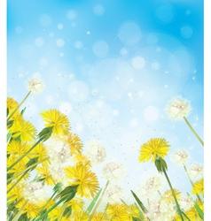 Flowers sky background vector