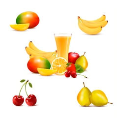 Group of summer and tropical fruit vector