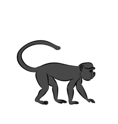 monkey sitting on a branch vector image vector image