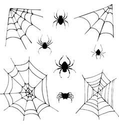 set of spiders vector image