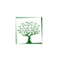 tree illutration vector image vector image