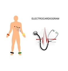 Ekg the patient with the electrodes on the chest vector