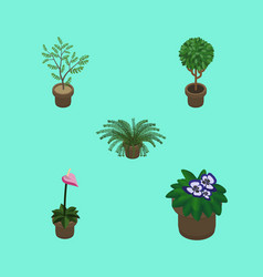 Isometric houseplant set of flowerpot plant tree vector