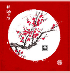 sakura blossom in white circle on red background vector image