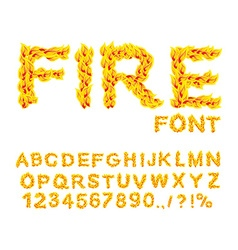 Fire font burning abc flame alphabet fiery letters vector